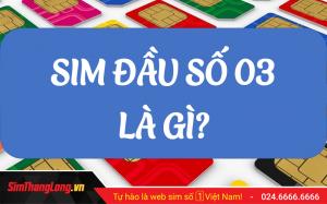 sim-dau-so-03